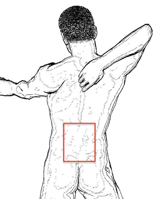 Bauchfett verbrennen: Die untere Rückenmuskulatur (Rückenstrecker, roter Rahmen) muss gleich stark trainiert werden wie die Muskeln am Bauch.