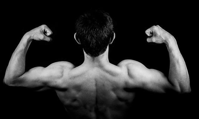 Muskelaufbau Tipps: Foto von den Schultermuskeln eines Mannes.