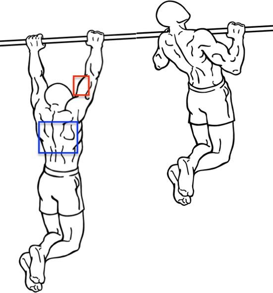 Muskeltraining Ohne Ger 228 Te Foto Von Der Anfangs Und