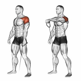 Frontheben: Foto von der Schulter-Übung Frontheben mit Kabelzug.