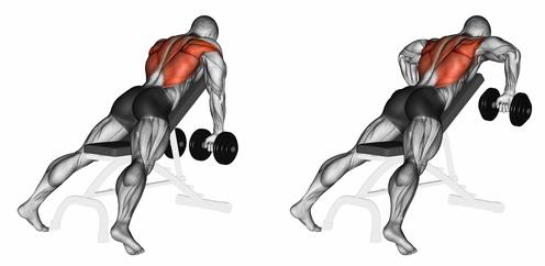 Kapuzenmuskel: Foto von einem Mann bei einer Hantelübung für den Trapezmuskel und Latissimus mit Kurzhanteln.