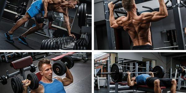 Körperfettanteil senken: Foto von 4 Ganzkörper Kraftübungen wie Bankziehen, Klimmzüge, Schulterdrücken und Bankdrücken.