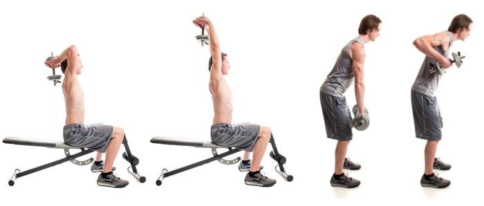 Supersatz: Fpto von einem Mann bei den Fitness-Übungen Trizeps und Bankziehen mit Kurzhanteln.