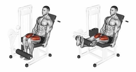 Beinstrecken: Foto von der Bein-Übung Beinstrecken am Gerät.