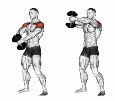 Foto von einem Mann bei der Schulter-Übung Frontheben mit Kurzhanteln zweiarmig.