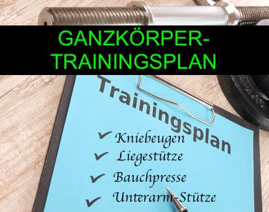 Foto von einem Ganzkörper Trainingsplan.
