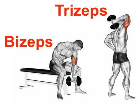 Wie dicke Oberarme bekommen? Foto von einem Mann bei einer Bizeps-Übung und einer Trizeps-Übung.