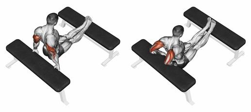 Wie dicke Oberarme bekommen? Foto von einem Mann bei der Trizeps-Übung Dips.
