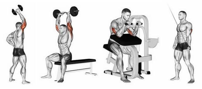 Armmuskeln Training: Foto von vier Trizepsdrücken Alternativen.