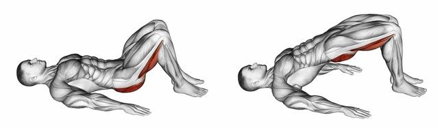 Beinbeuger liegend: Foto von der Bein-Übung Beckenheben.