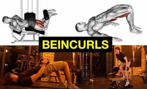 Beincurls zuhause trainieren: Foto von vier Beinbeuger-Übungen zuhause und Maschine.