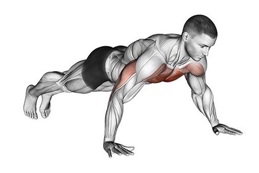 Brustmuskeln trainieren ohne Geräte: Foto von der Übung breite Liegestütze.