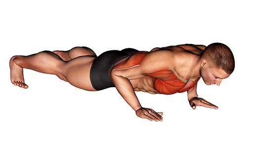 Brustmuskeln trainieren ohne Geräte: Foto von der Übung normale Liegestütze.