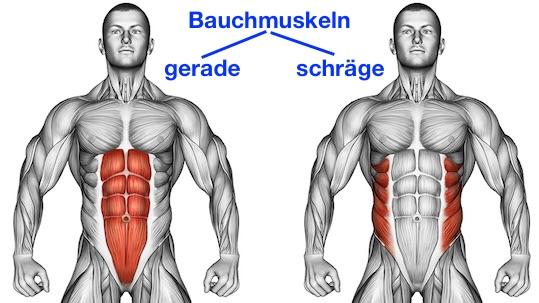 Effektive Bauchmuskelübungen: Foto von den geraden und schrägen Bauchmuskeln.