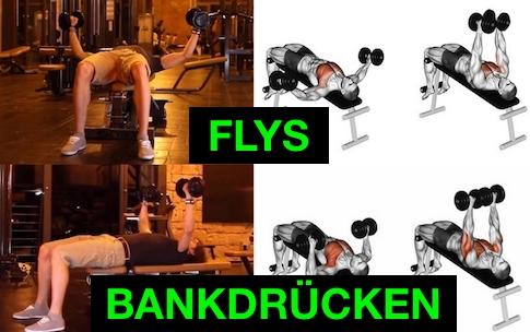 Foto von der Brust-Übungen Kurzhanteln Flys und Bankdrücken.