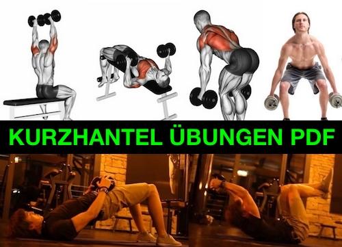 Kurzhantel Übungen PDF: Foto von sechs Übungen mit Kurzhanteln.