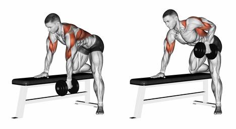 Rückenmuskulatur stärken: Foto von einem Mann bei der Rücken-Übung einarmiges Kurzhantelrudern.