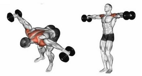 Foto von der Oberkörper-Übung vorgebeugtes Seitheben und Seitheben stehend.