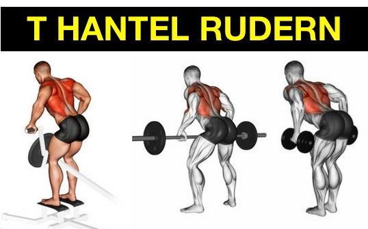 Foto von den Übungen T Hantel Rudern mit Maschine, Langhantel und Kurzhanteln.