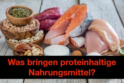 Proteinhaltige Nahrung: Foto von eiweißhaltigen Nahrungsmitteln.