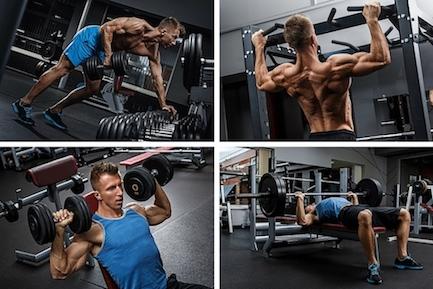Foto von vier Übungen für ein Ganzkörperkrafttraining.