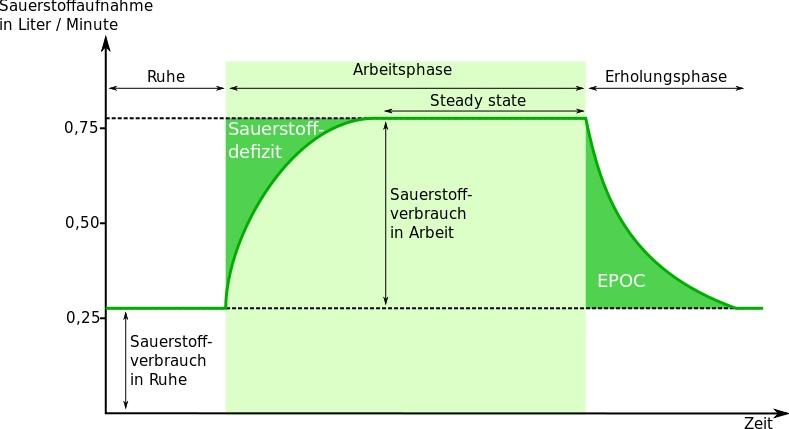 Hochintensives Intervalltraining: Grafik vom Nachbrenneffekt beim Sport.