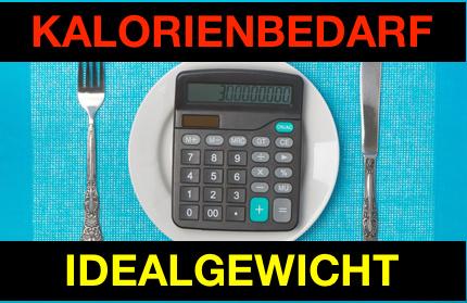 Kalorienbedarf ausrechnen und Idealgewicht berechnen: Foto von einem Taschenrechner auf einem Teller mit Besteck.