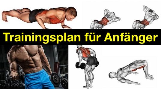 Trainingsplan für Anfänger: Foto von fünf Kraftübungen.