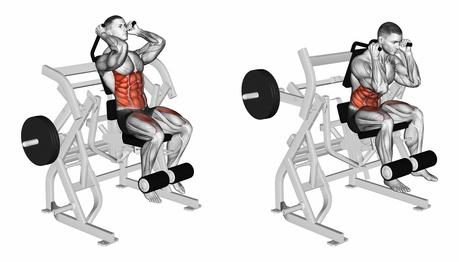 Bauchmuskeltraining Übungen mit Bildern: Foto von der Übung Bauchpresse am Gerät.