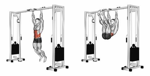Foto von der Übung Beinheben hängend als eine der Klimmzugstange Übungen.