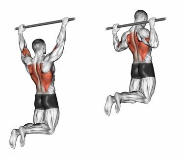 Foto von der Übung breite Klimmzüge im Obergriff zum Rückenmuskulatur trainieren.