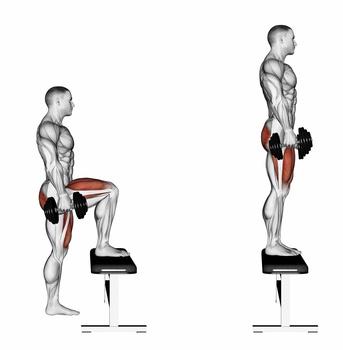 Großer Gesäßmuskel trainieren: Foto von der Übung Aufsteiger mit Kurzhanteln.