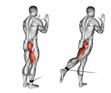 Kabelzug Übungen: Foto von der Bein Übung Hüftstrecken am Kabelzug.