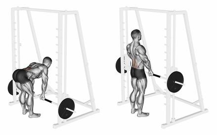 Foto von der Übung Langhantel Kreuzheben an der Multipresse mit gestreckten Beinen zum unteren Rücken trainieren.