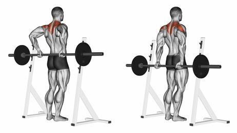 Foto von der Übung Nackenziehen mit Langhantel hinten zum Nackenmuskulatur trainieren.
