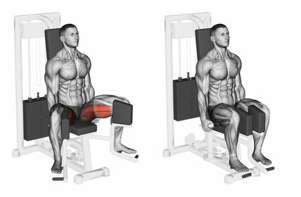 Oberschenkelmuskel trainieren: Foto von der Übung an der Adduktoren Maschine.