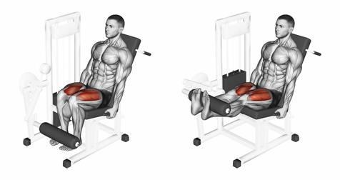 Oberschenkelmuskel trainieren: Foto von der Übung an der Beinstrecker Maschine.
