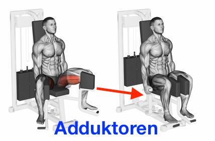 Foto von der Übung Adduktoren-Maschine zum Oberschenkelmuskulatur aufbauen.