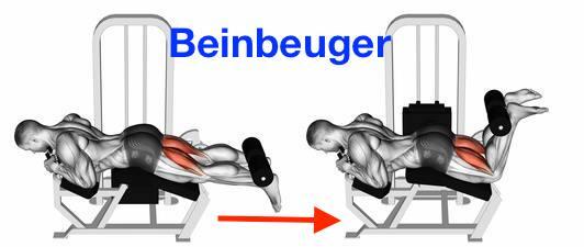 Foto von der Übung Beinbeuger Maschine zum Oberschenkelmuskulatur aufbauen.