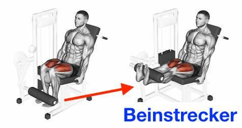 Foto von der Übung Beinstrecker Maschine zum Oberschenkelmuskulatur aufbauen.