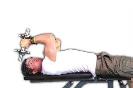 Hanteltraining PDF: Foto von der Trizepsübung Trizepsdrücken liegend mit Kurzhantel.