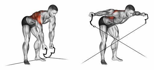 Kabelzug Übungen: Foto von der Trapezmuskel Übung vorgebeugtes Seitheben am Kabelzug.
