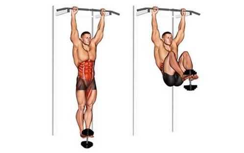 Foto von der Bauchübung Knieheben hängend mit Kurzhantel.