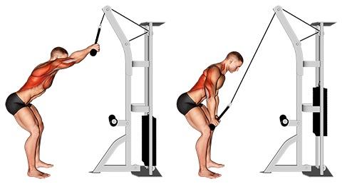Seilzugübungen: Foto von der Übung Latziehen stehend am Seilzug.