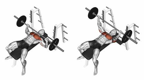 Brustmuskel Übungen: Foto von der Übung Langhantel Bankdrücken.