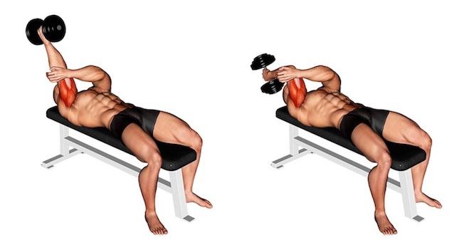 Trizeps Übungen Kurzhantel: Foto von der Übung einarmiges Stirndrücken Kurzhantel liegend.