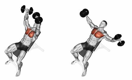 Effektive Brustübungen: Foto von der Übung Fliegende Schrägbank mit Kurzhanteln.