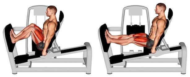 Foto von der Übung horizontale Beinpresse sitzend.