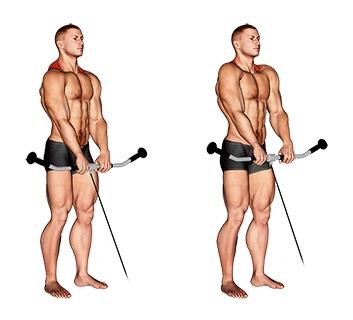 Nackentraining: Foto von der Übung Nackenziehen am Kabelzug.