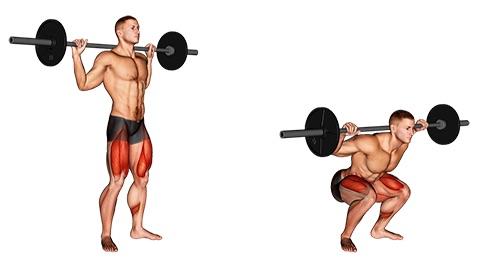 Foto vom Oberschenkelrückseite trainieren mit der Übung Kniebeugen mit Langhantel.
